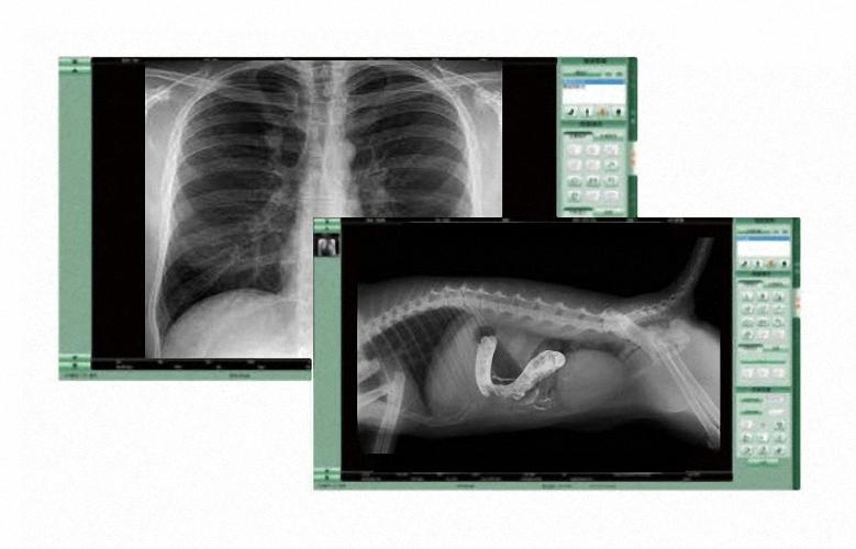 Spezialangebot DR Upgrade für Humanmediziner und Veterinäre Digitale Flachbilddetektore DR Detektor Nachrüstung digitales Röntgen reibungsloser Wechsel auf ein digitales Röntgensystem DR Retrofit Röntgen Nachrüstlösungen